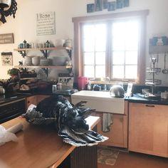 kitchen idea--- the paleo mama jackie ritz