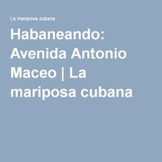 Habaneando: Avenida Antonio Maceo   La mariposa cubana