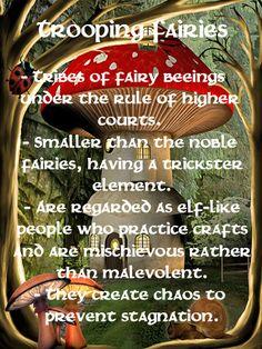 Trooping Fairies