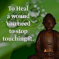 To heal the wound you need to stop touching it.