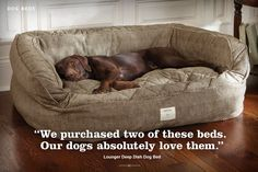 Dog Beds | Memory Foam, Tempur-Pedic and Bolster -|Dogs|Dog Beds -- Orvis