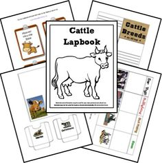 FREE Cattle (Cow) Lapbook Printables and Unit Study