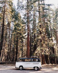 // Coast by Coast //