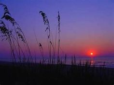 Kiawah Island SC....Love to go here to relax and walk! Gated. $7 per car. Picnic tables/snack bar/lifeguards