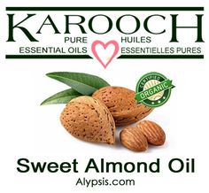 Sweet Almond Certified Organic Prunus amygdalus Sweet Almond oil is Diluting Essential Oils, Rich In Protein, Prunus, Carrier Oils, Massage Oil, Sweet Almond Oil, Lotions, Avocado, Coconut