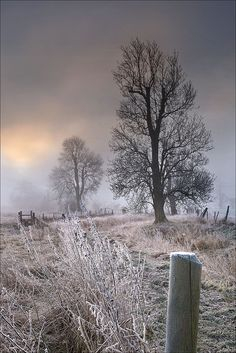 You can tell a patch of countryside is really special if it looks as alluring in the middle of winter as it does in the glamour of summer. So what does that make you think of this view of the water meadows around Silbury, Wiltshire, taken by Philip Selby? Winter Szenen, Winter Time, Beautiful World, Beautiful Places, England, Just Dream, Snow Scenes, Winter Beauty, English Countryside