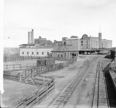 1910  Colorado Meat packing Co ~ Denver Colorado ~ 1910