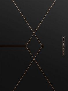 EXO 엑소 Second Box DVD Cover | I STILL CAN'T BELIEVE I GOT THIS FOR CHRISTMAS❣ I EVEN GOT 1 OF 2 LIMITED EDITION VERSIONS! *STILL FREAKING OUT*