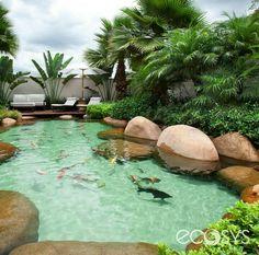 - All For Backyard Ideas Backyard Pool Designs, Ponds Backyard, Swimming Pool Designs, Backyard Patio, Backyard Landscaping, Natural Swimming Ponds, Natural Pond, Indoor Pond, Koi Pond Design