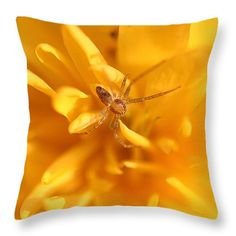 Spider on a yellow flower, Throw Pillow, In stock