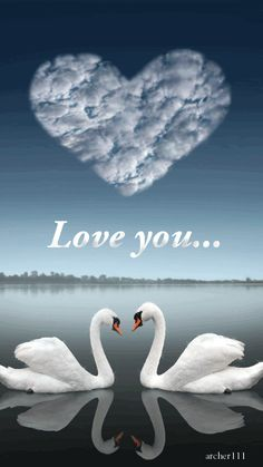 ~♡~ Always in my heart Mum and Dad. I love you and miss you both so very much, xoxox 19th February 2016 ~♡~