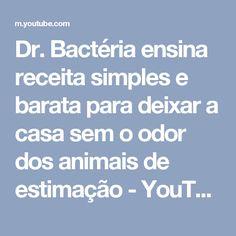 Dr. Bactéria ensina receita simples e barata para deixar a casa sem o odor dos animais de estimação - YouTube