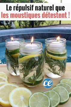 Summer Mason Jar Luminaries Summer Mason Jar Luminaries - These are not only easy and beautiful they are also a chemical free DIY Bug Repellent! Mason Jar Luminaries - These are not only easy and beautiful they are also a chemical free DIY Bug Repellent! Pot Mason Diy, Mason Jar Crafts, Jelly Jar Crafts, Mason Jar Garden, Mason Jar Herbs, Keep Bugs Away, Citronella Candles, Mason Jar Candles, Diy Candles