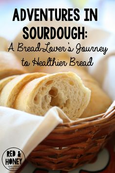sourdough story A match made with leaven: a true story of loafing, lust, and loss —headline of review with recipe tested by the palm beach post this is one of the best books i have read (i have read many) on the history of sourdough.