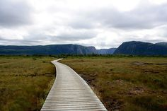 Western Brook Pond, Newfoundland and Labrador, Hiking path to boat tour. Newfoundland Canada, Newfoundland And Labrador, Canadian Travel, Adventure Holiday, Boat Tours, Whale Watching, Travel Stuff, Future Travel, Kayaking