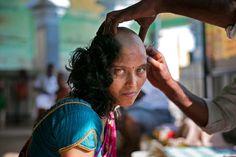 """Rupa, 28, bekommt am 10. November im Thiruthani Murugan Tempel in Thiruttani, Indien, ihre Haare rasiert. Sie hofft, dass die Spende an die Götter die Krankheit ihrer Tochter heilt. Es ist bei gläubigen Hindus üblich, ihre Haare schon im jungem Alter ihre Haare in Tempeln scheren zu lassen. Die """"Tempelhaare"""" werden dann an ein Verarbeitungswerk versteigert und als Haarteile und Perücken in den USA, Europa und Afrika verkauft."""