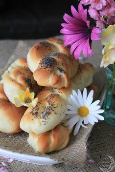 Poppy Seed Bread Braids