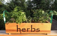 Planter Box - Herbs or Flowers | Remarkable Furnishings