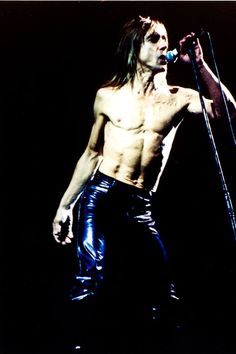 Iggy Pop. Discografía.  The Stooges (1969) Fun House (1970) Raw Power (1973) The Weirdness (2007) The Idiot, (1977) Lust For, (1977) Kill City (1977) New Values, (1979) Soldier, (1980) Party, (1981) Zombie Birdhouse, (1982) Blah Blah Blah, (1986) Instinct, (1988) Brick by Brick, (1990) American Caesar, (1993) Naughty Little Doggie, (1996) Avenue B, (1999) Beat 'Em Up, (2001) Skull Ring, (2003) Nude and Rude Aprés,  (2012)
