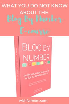 Planning to start a blog?Check out the Blog By Number e-course and learn the unbelievable hacks in starting a profitable blog.