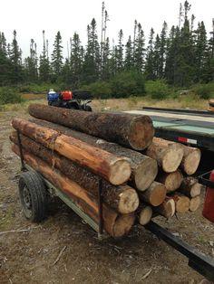 Spruce Sawlogs