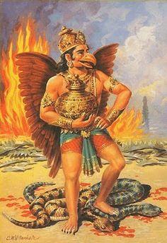 Na india, como os hindus....         A seguir os sete animais sagrados para o hinduismo     1-As Aves     Para os antigos indianos, a...