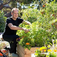 Tips for growing edibles in raised beds
