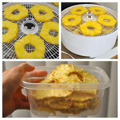 Homemade dried apples, dried pineapple, turkey jerky and dog treats on a dehydrator