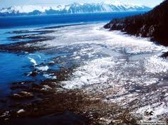 Major Sea floor Uplift in America - Shit!!