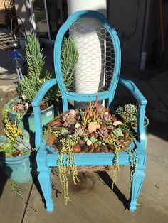Turquoise Succulent Chair with chicken wire