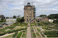 Het Hotel van Villa Augustus in Dordrecht