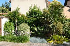 piscine terrasse en bois, aménagement paysager avec de palmiers, Nicolas Roubaud… Tropical Landscaping, Tropical Garden, Garden Edging, Ornamental Grasses, Landscape Design, Herbs, Plants, Outdoor, Inspiration