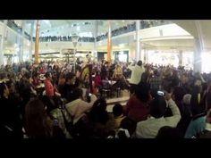 Orquesta Sinfónica de Xalapa Flash Mob