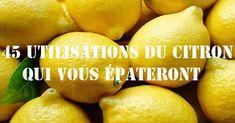 La plupart des gens connaissent les utilisations traditionnelles avec du citron pour apaiser les maux de gorge et ajouter un peu de saveur d'agrumes à nos aliments.......DOCUMENT.......