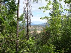 High Rim Trail