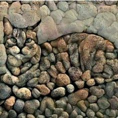 Stone art ( this artist obviously WASN'T STONED when created this artwork with feeling ( well with more feline with feeling technically ) 😽 Pebble Mosaic, Pebble Art, Mosaic Art, Mosaics, Stone Mosaic, Rock Mosaic, Mosaic Rocks, Art Rupestre, Art Pierre