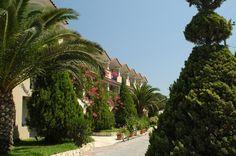 Letsos Hotel (Ζάκυνθος) | Bookgreece.com