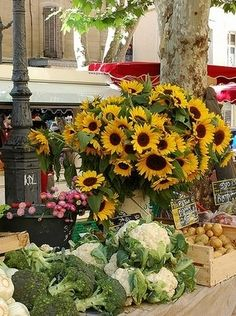 Market Day, Aix en Provence -  I lived right beside both the flower market and vegetable market. Best in the world!!
