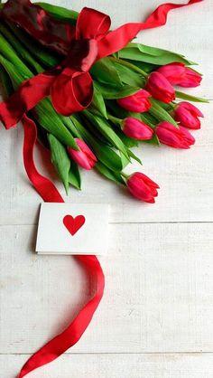 Wallpaper iPhone # tulips