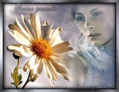 centerblog .net belle image hello bonjour | bonjourbonne journee gifs animes…