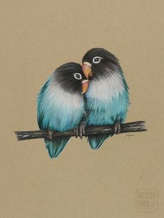 """Love Birds"" Polychromos Pencils on Toned Tan Paper."