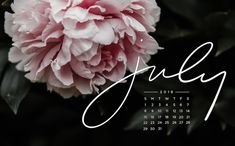 Free, Downloadable Tech Backgrounds for July 2018!