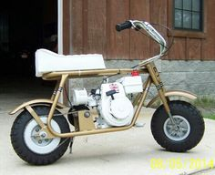 Hornet Minibike