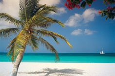Aruba, Caribbean