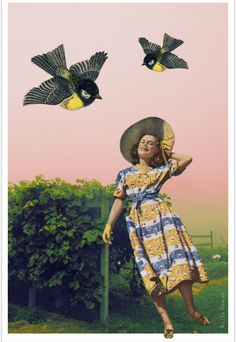 Collage by Liza Cowan. Photo of Intervale farm, Burlington VT by Liza Cowan. Woman figure from ad for Horrockses, a British dress company. Birds from old German illustration.