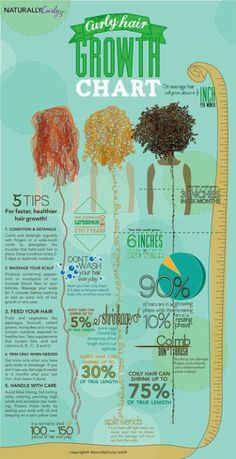 Hair Growth Chart Curly Hair Growth Chart: How long can your hair grow in a year? Get some tidbits and tips about curly hair growth!Curly Hair Growth Chart: How long can your hair grow in a year? Get some tidbits and tips about curly hair growth! Curly Hair Growth, Curly Hair Tips, Healthy Hair Growth, Hair Care Tips, Curly Hair Styles, Frizzy Hair, Kinky Hair, 4a Hair, Curly Hair Care