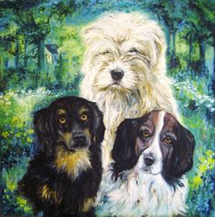 'Dogs' oil on canvas by Amanda Wright