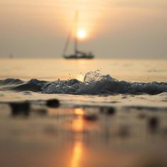 Sailing against the sunset