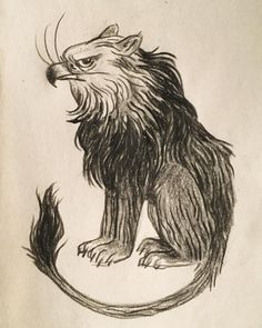 drawings & sketchings — grump griffon