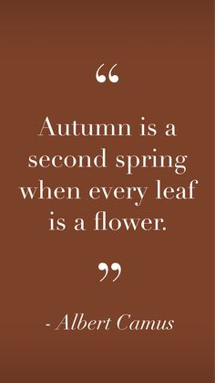 Yet another place for me to post chic and inspiring photos! Words Quotes, Wise Words, Me Quotes, Motivational Quotes, Inspirational Quotes, Sayings, Autumn Inspiration, Journal Inspiration, September Images